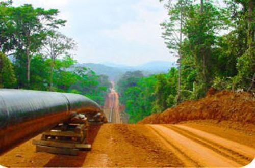 Pipeline Tchad-Cameroun: la partie camerounaise a perçu 27 milliards de FCFA de droit de transit entre janvier et octobre 2016
