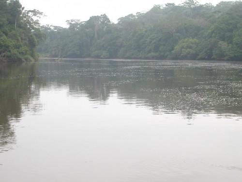 Cameroun : 600 MW d'électricité à conquérir sur le bassin du Dja à l'horizon 2020