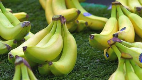 СДС жана кыйынчылыктарга карабастан, Камерун биринчи чейрегинде 3 817 2019 тоннага чейин банан экспортун көрсөтөт