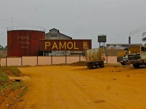 PAMOL PLANTATION LTD