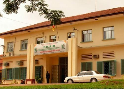 L'Institut de recherche agricole pour le développement valide un budget de 9 milliards de FCFA pour l'exercice 2015