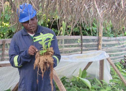ياوندي تستضيف قمة دولية لرواد الأعمال الزراعية الرعوية المشتركة التي تنظمها Fida