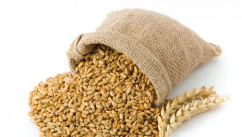 Le meunier camerounais Sctb lorgne 30% du marché local de la farine, grâce à de nouveaux investissements