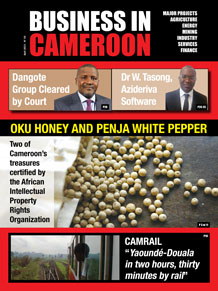 Business in Cameroon n°3