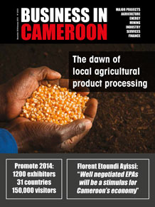 Business in Cameroon n°22-23