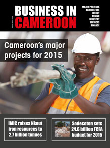 Business in Cameroon n°24