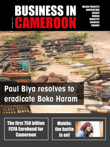 Business in Cameroon n°25
