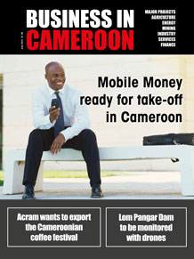Business in Cameroon n°28