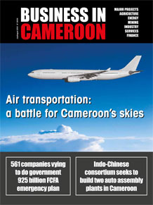 Business in Cameroon n°29-30