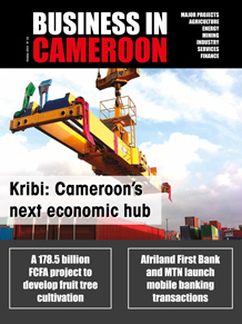Business in Cameroon n°32