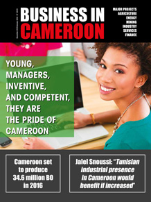 Business in Cameroon n°34-35