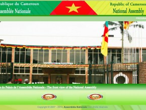 des-cybers-pirates-s'emparent-de-l'ancien-site-web-de-l'assemblée-nationale-du-cameroun