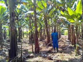naandan-jain-france-sarl-fournira-du-materiel-d-irrigation-a-la-cdc-pour-385-millions-de-fcfa