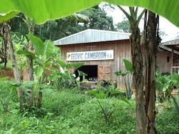 Geovic Cameroun à la recherche de financements pour le gisement de Nkamouna