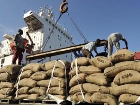les-exportations-de-cacao-au-cameroun-ont-progressé-de-24-au-30-avril-2015-à-181-893-tonnes