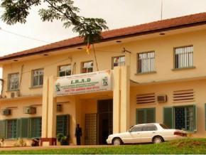 l-institut-de-recherche-agricole-pour-le-developpement-valide-un-budget-de-9-milliards-de-fcfa-pour-l-exercice-2015
