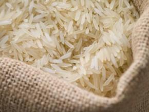 un-projet-de-cooperation-avec-la-coree-du-sud-a-permis-de-mettre-au-point-37-varietes-de-riz-au-cameroun