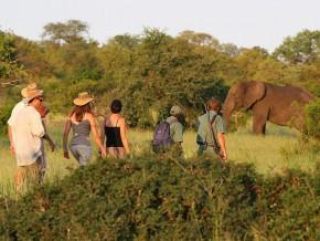 cameroun-vers-une-chute-des-arrivées-de-touristes-en-2014-du-fait-de-la-menace-boko-haram