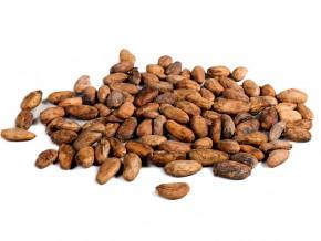 cameroun-1800-sechoirs-et-des-magasins-de-stockage-de-feves-retrocedes-aux-producteurs-de-cacao