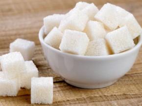 des-investisseurs-bresiliens-veulent-produire-du-sucre-au-cameroun