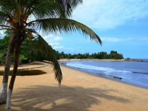 epingle-par-le-regulateur-soado-sarl-promet-de-demander-le-visa-permettant-de-lever-des-fonds-sur-le-marche-financier-camerounais