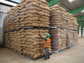 le-cameroun-commodities-exchange-devrait-consacrer-le-financement-par-récépissé-d'entrepôt