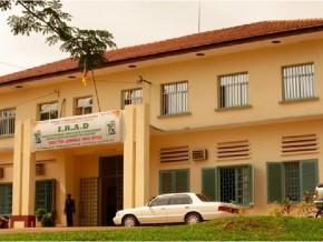 65-milliards-de-fcfa-pour-la-recherche-agronomique-au-cameroun-en-2015