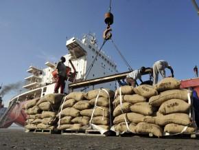 l-exportateur-des-feves-camerounaises-telcar-cocoa-ambitionne-de-franchir-le-cap-de-100-000-tonnes-d-achats-en-2018-2019