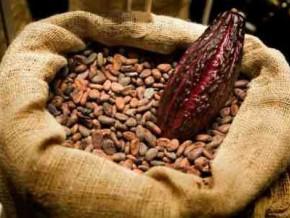 environ-97-de-la-production-cacaoyere-exportee-par-le-cameroun-au-cours-de-la-campagne-2015-2016-etait-du-grade-ii