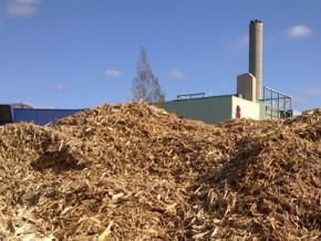 le-cameroun-a-identifié-37-sites-pouvant-permettre-de-produire-37-mw-d'énergie-grâce-à-la-biomasse