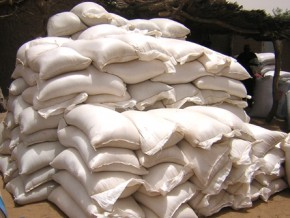 110-tonnes-de-sucre-frauduleusement-importees-saisies-dans-la-capitale-camerounaise
