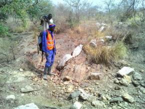 cameroun-reservoir-minerals-identifie-30-km-de-minéralisation-aurifère-à-bibemi