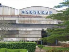 l'interdiction-des-importations-consolide-le-monopole-de-sosucam-sur-le-marché-camerounais-du-sucre