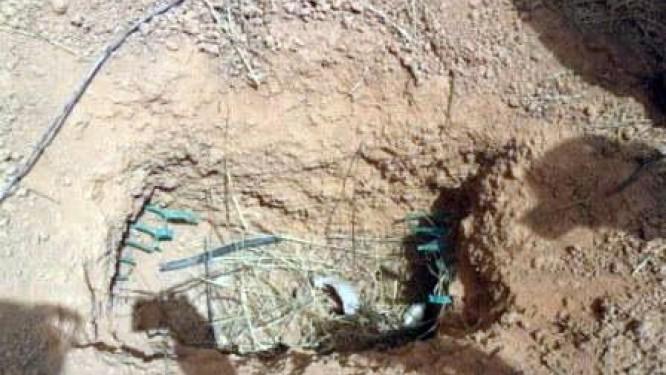 cameroun-selon-l-art-la-vandalisation-des-equipements-telecoms-et-les-delestages-contribuent-a-deteriorer-la-qualite-de-service