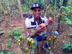 un-milliard-de-fcfa-pour-installer-de-jeunes-agriculteurs-camerounais-en-2017
