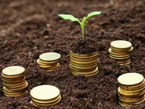 la-chambre-d-agriculture-du-cameroun-a-deja-collecte-300-millions-de-fcfa-pour-creer-sa-structure-de-microfinance