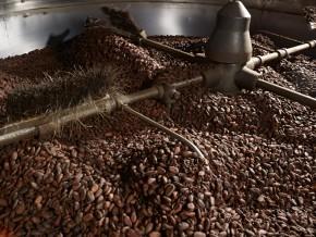 l-ambition-de-l-australien-atlantic-est-de-transformer-15-000-tonnes-de-cacao-au-cameroun