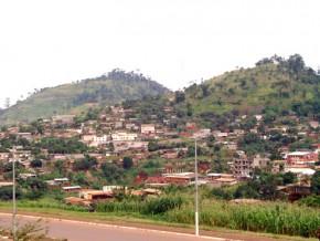 pour-preserver-l-ecosysteme-peri-urbain-il-sera-plante-des-dizaines-de-milliers-d-arbres-en-2017-dans-la-capitale-du-cameroun