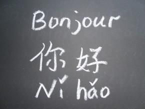 cameroun-10-000-personnes-apprennent-la-langue-chinoise-qui-accroit-les-opportunités-d'emplois