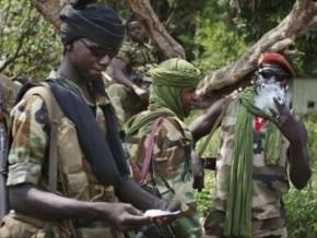 nouvelle-incursion-de-rebelles-centrafricains-en-territoire-camerounais