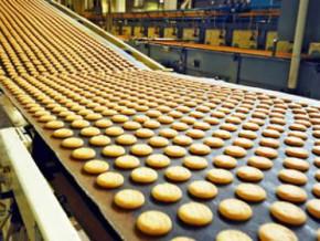 cameroun-huit-projets-industriels-en-vue-pour-32-milliards-de-fcfa-d-investissements