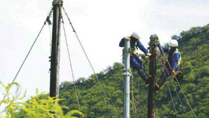 d-ici-2019-l-electricien-camerounais-eneo-installera-35-mw-de-solaire-dans-les-trois-regions-septentrionales