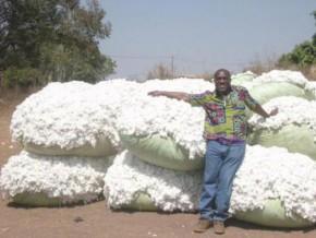 cameroun-la-société-de-développement-du-coton-reçoit-365-milliards-de-fcfa-d'un-pool-bancaire