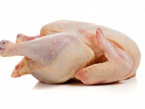 grippe-aviaire-le-gouverneur-du-centre-va-designer-les-marches-ou-seront-vendus-les-poulets-a-yaounde