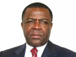 le-port-de-douala-et-celui-de-kribi-en-tandem-pour-constituer-un-hub-en-afrique-centrale