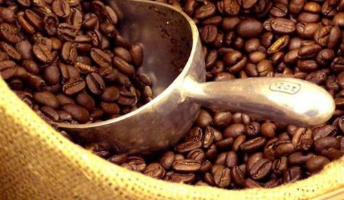 Cameroun : la filière café poursuit son déclin, avec une nouvelle baisse de près de 20% de la production 2016-2017, à 20 270 tonnes