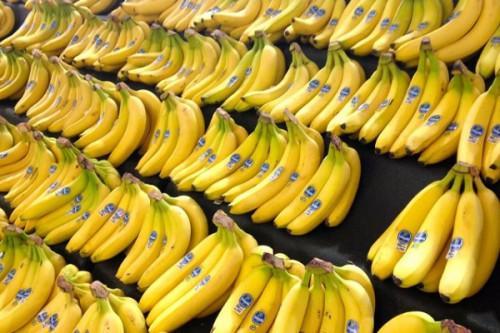 Avec 15641 tonnes en juin 2020, les exportations de la banane camerounaise progressent de 10% sur un an