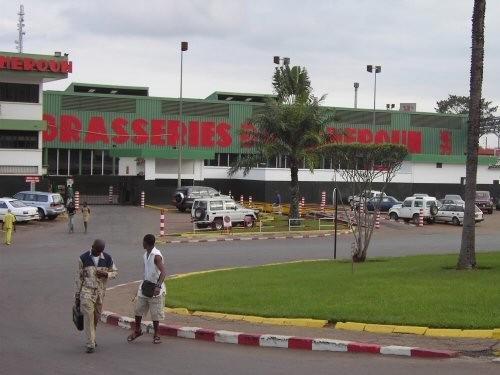 Les usines des Brasseries du Cameroun ont produit près de 500 millions de litres de bière, en 2017