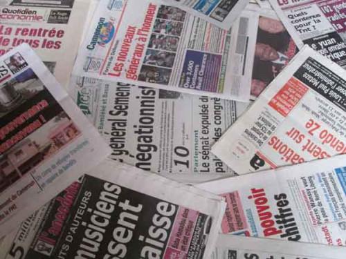 Le nombre de médias privés au Cameroun en nette progression de 2013 à 2017