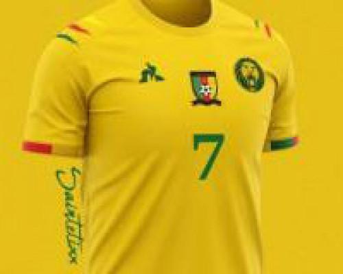 5c3bfa1abb Le français « Le coq sportif » décroche le contrat d'équipementier des  Lions indomptables, l'équipe fanion de football du Cameroun
